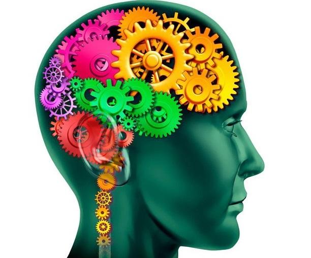 Mémoire : quels sont les meilleurs exercices de mémorisation pour l'entretenir ?